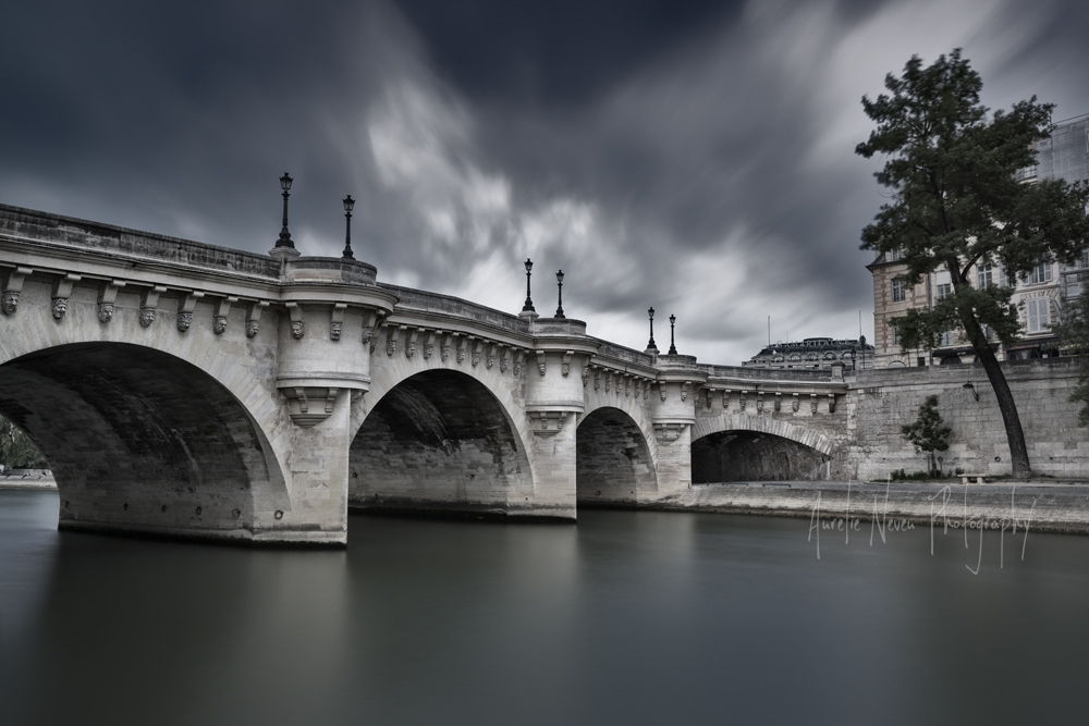 Pont Neuf, Paris, France  (AUN2014K12135FR)